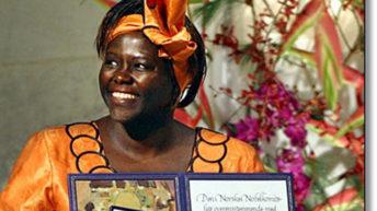 Wangari maathai: kenya's nobel peace prize winner