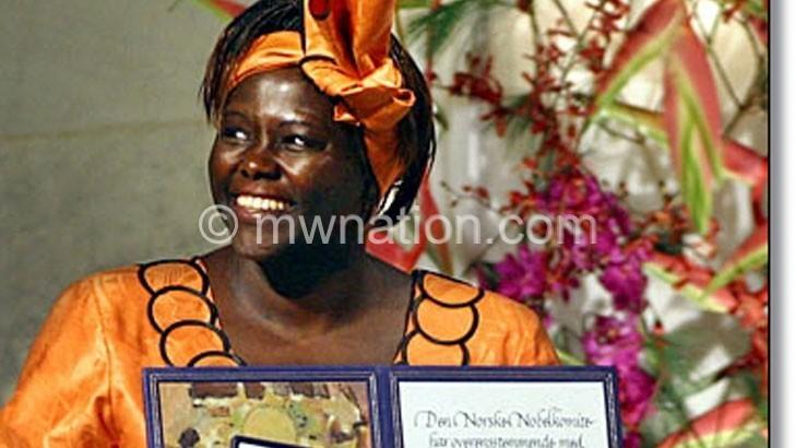 Wangari maathai Nobel | The Nation Online