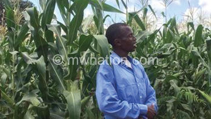 Universal fertiliser subsidy expensive for Malawi