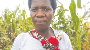 Gender parity on the farm