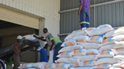 Committee sees new price stabilising maize market