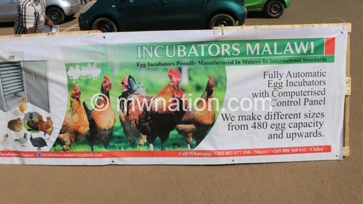 Incubators Malawi | The Nation Online