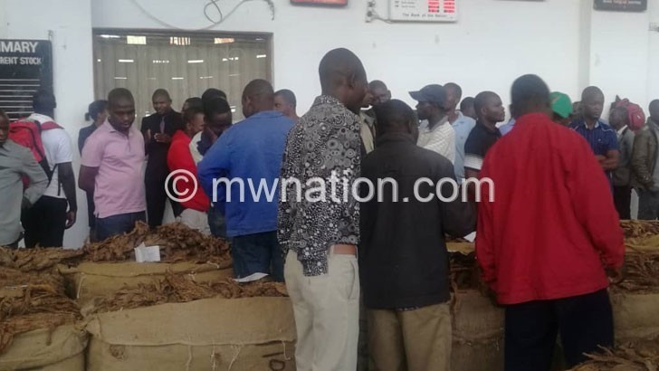 Tobacco auction | The Nation Online