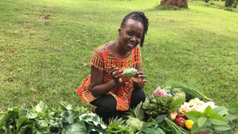 Programme to help farmers increase productivity