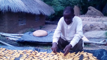 Gold in dried mangoes