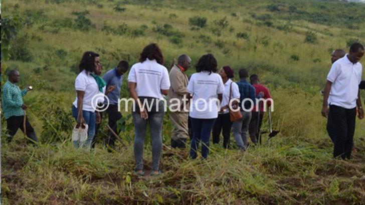 Environmental NGOs tend Mudi trees