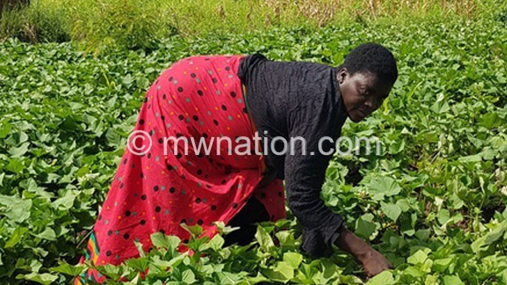 Women embrace climate smart agriculture