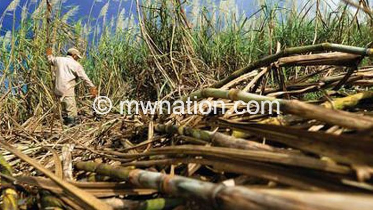 Malawi maintains grip  on sugar production