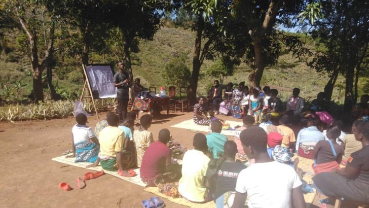 Mulanje tea farmers cry for better prices