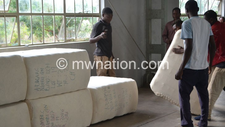 cotton 1 | The Nation Online