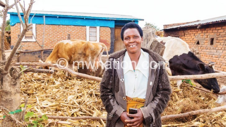 cow farmer | The Nation Online