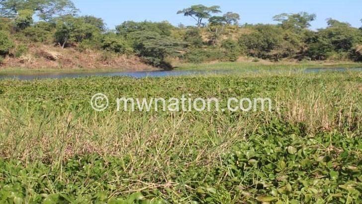 Water hyacinth haunts scheme rehabilitation