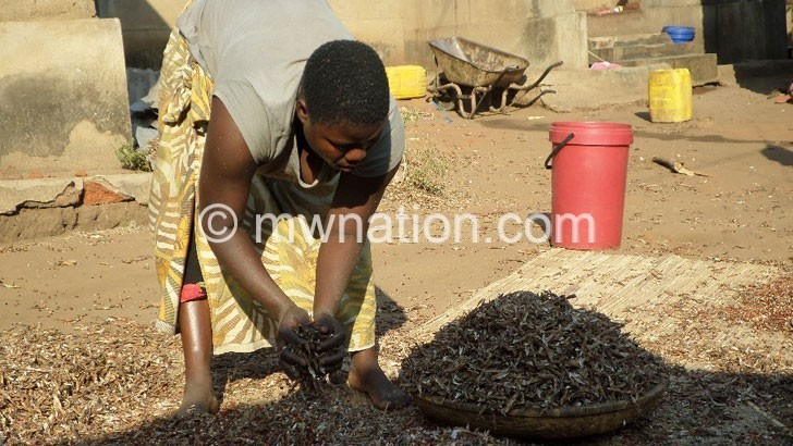 Pegion peas | The Nation Online