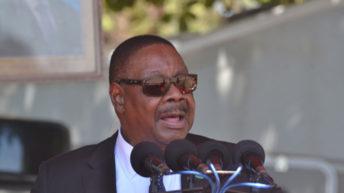 Mutharika declares war on HRDC, MCP, UTM