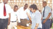 Frontline women of tobacco markets