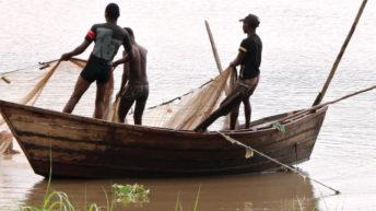 Fishing community urged to observe closed season