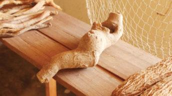 Likoma cultural tourism at a glance