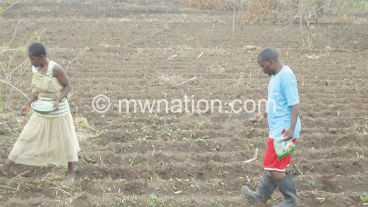 planting | The Nation Online