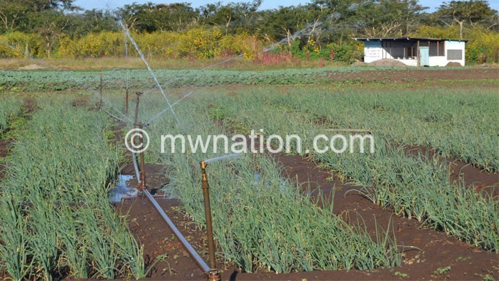 AGRICULTURE | The Nation Online