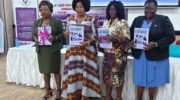 NGO-GCN launches gender equality barometer