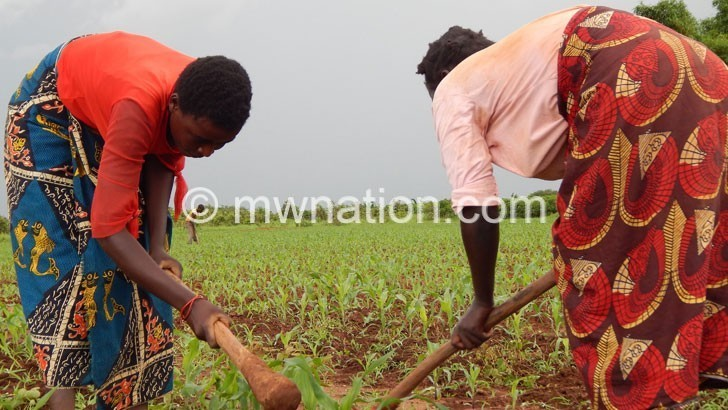 agriculture 1 | The Nation Online