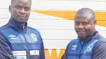 Nomads take it slow on transfers