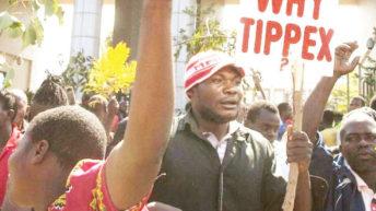 Campaigners celebrate victory