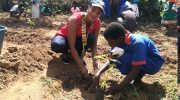 Rotarians, Nasfam in tree-planting exercise