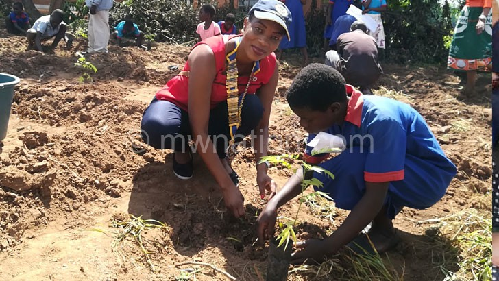 treeplanting | The Nation Online