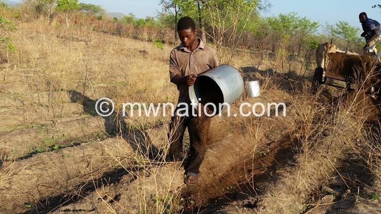 Farmer applying manure 1 | The Nation Online