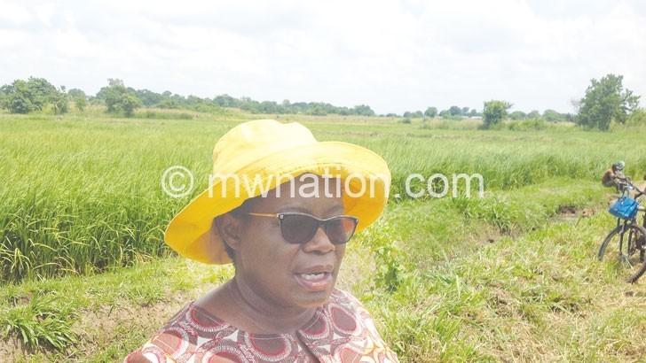 Mtupanyama | The Nation Online